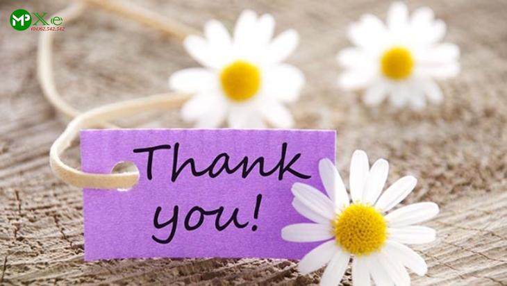 Xin trân thành cảm ơn quý khách đã sử dụng dịch vụ của Mai Phương